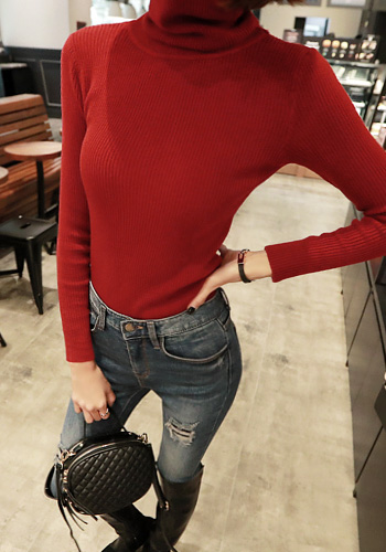 Solid Tone Slim Fit Turtleneck Top